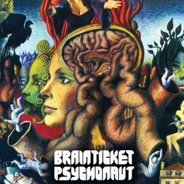 9024-brainticket3.jpg